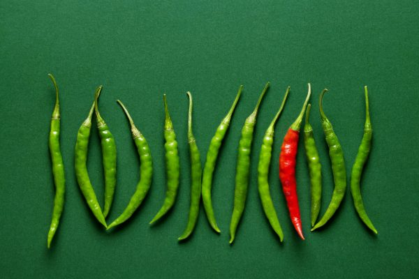 Green,Chilli,Peppers,Lined,Up,With,A,Single,Red,Hot